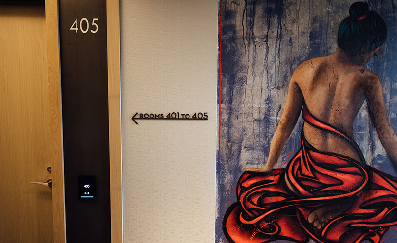 Custom Painting in Preston House & Hotel